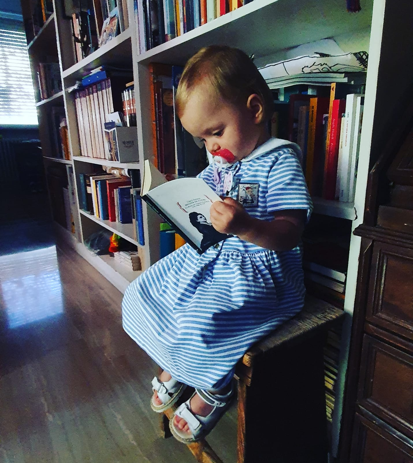 20 Novembre 2021. Il piccolo lettore Maisazio